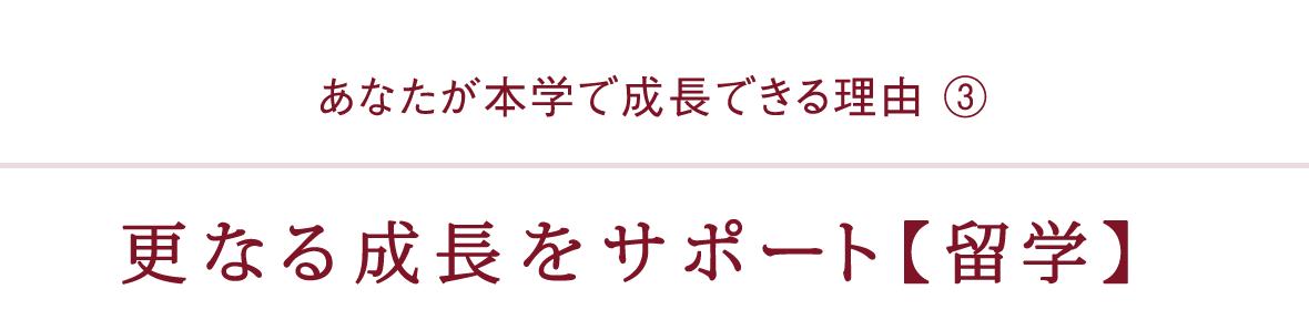 更なる成長をサポート【留学】